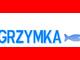 PIELGRZYMKA TV