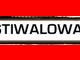 FESTIWALOWA TV