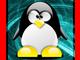 Logic Pingwin Live