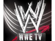 WWE Television