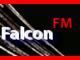 falcon-fm