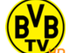 Borussia TV