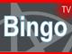 Losowanie Bingo