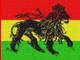 w okolicach reggae