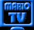 Mario 2013
